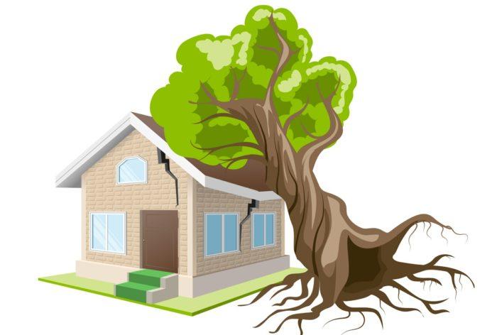 Что такое страхование квартиры и что входит в полис? Как правильно застраховать квартиру: порядок. Где и в какой компании лучше застраховать квартиру: отзывы, список лучших